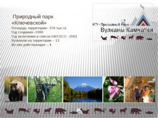 Природный парк «Ключевской» Площадь территории– 376 тыс.га Год создания -199