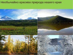 Необычайно красива природа нашего края