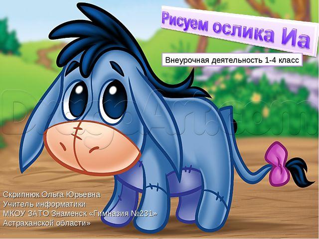 Внеурочная деятельность 1-4 класс Скрипнюк Ольга Юрьевна Учитель информатики...