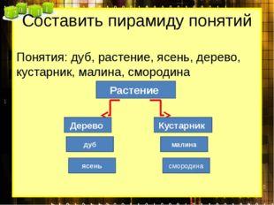 Составить пирамиду понятий Понятия: дуб, растение, ясень, дерево, кустарник,