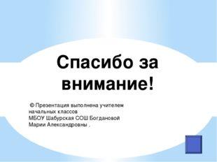 Спасибо за внимание! © Презентация выполнена учителем начальных классов МБОУ