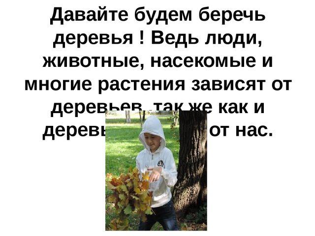 Давайте будем беречь деревья ! Ведь люди, животные, насекомые и многие растен...