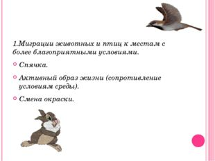 1.Миграции животных и птиц к местам с более благоприятными условиями. Спячка