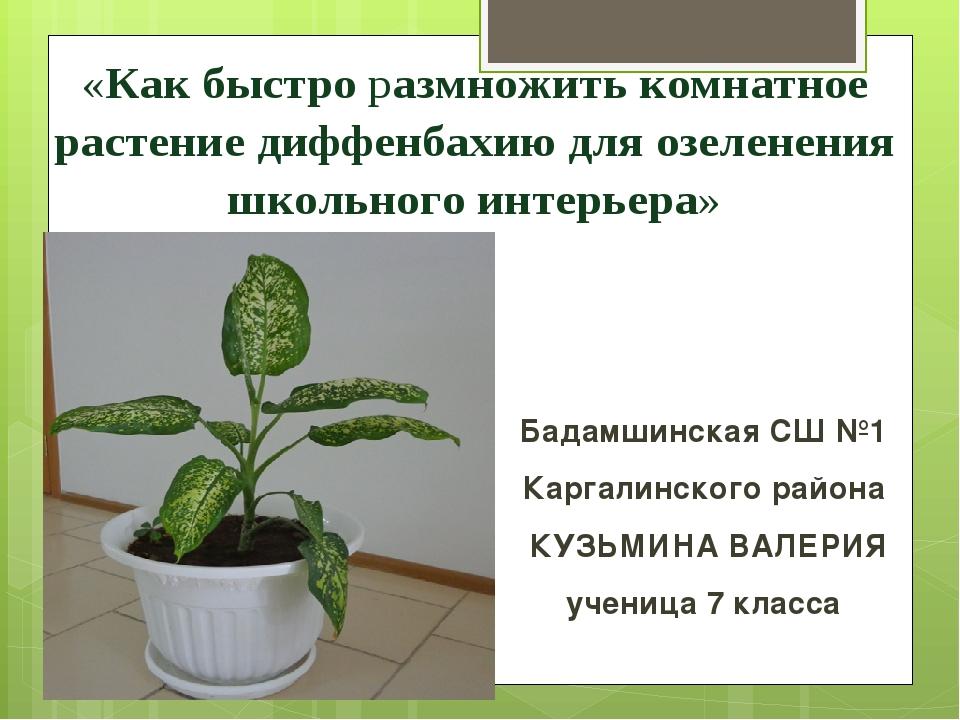 Бадамшинская СШ №1 Каргалинского района КУЗЬМИНА ВАЛЕРИЯ ученица 7 класса