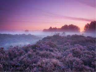 Утренний туман…