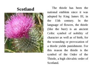 Scotland The thistle has been the national emblem since it was adopted by Kin