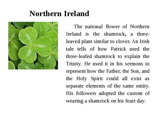 Northern Ireland The national flower of Northern Ireland is the shamrock, a t...