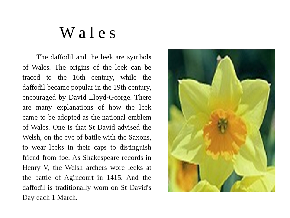 W a l e s The daffodil and the leek are symbols of Wales. The origins of the...