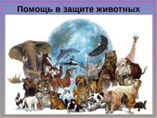 Помощь в защите животных