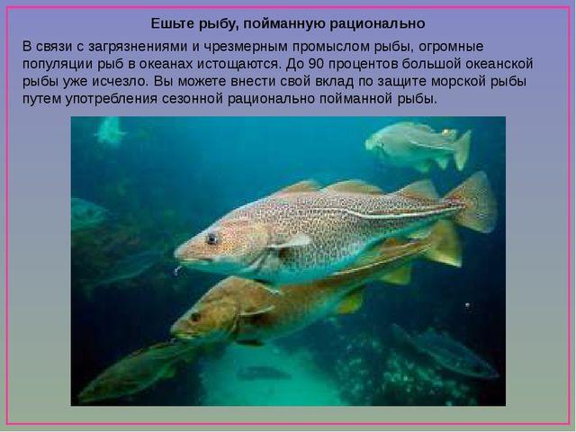 Ешьте рыбу, пойманную рационально В связи с загрязнениями и чрезмерным промы...