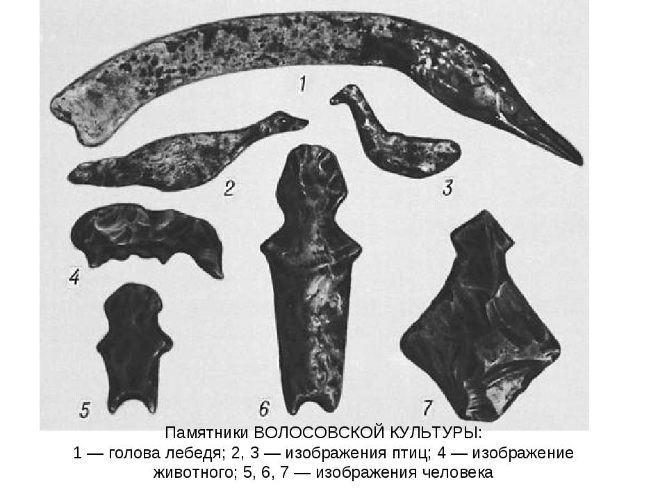 Памятники ВОЛОСОВСКОЙ КУЛЬТУРЫ: 1 — голова лебедя; 2, 3 — изображения птиц; 4...