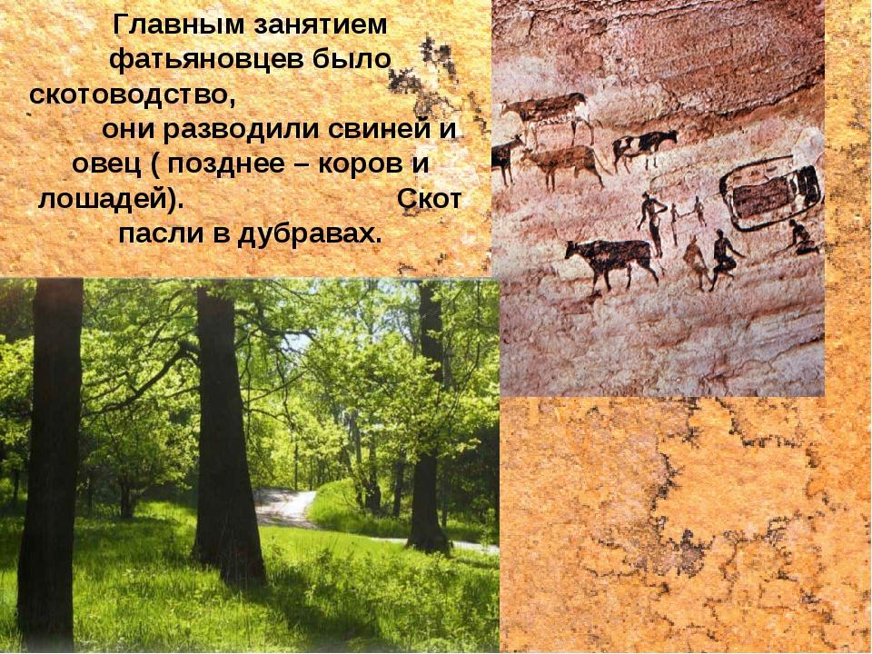 Главным занятием фатьяновцев было скотоводство, они разводили свиней и овец (...
