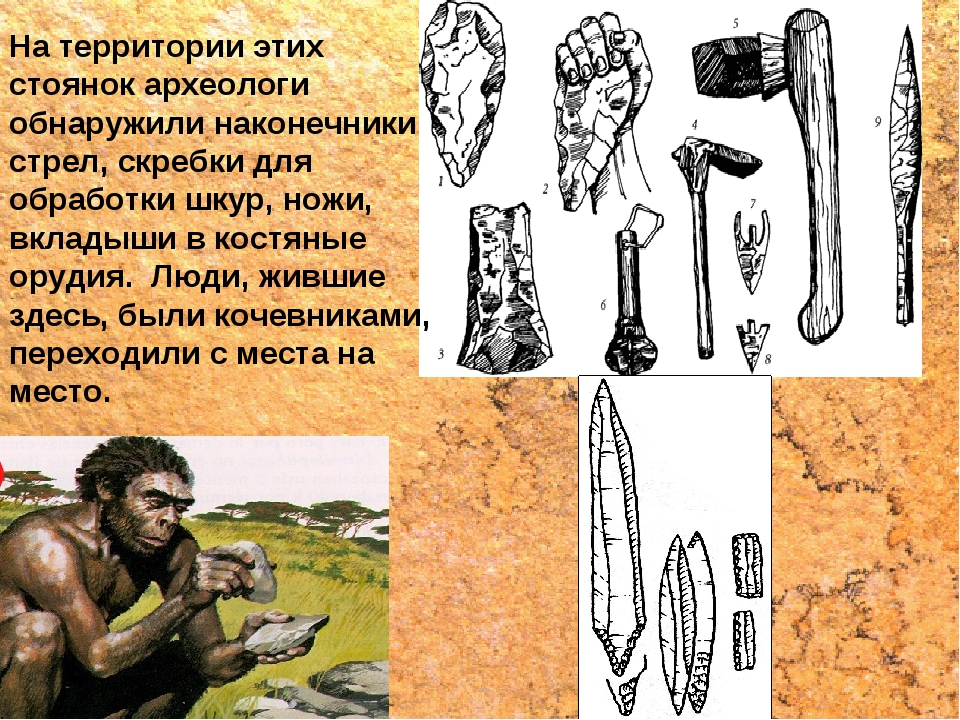 На территории этих стоянок археологи обнаружили наконечники стрел, скребки дл...