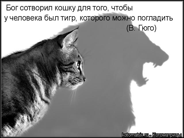 hello_html_m108eefac.jpg