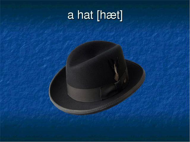 a hat [hæt]