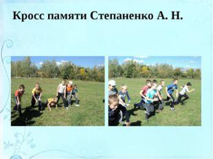 Кросс памяти Степаненко А. Н.