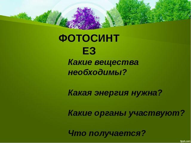 ФОТОСИНТЕЗ Какие вещества необходимы? Какая энергия нужна? Какие органы участ...