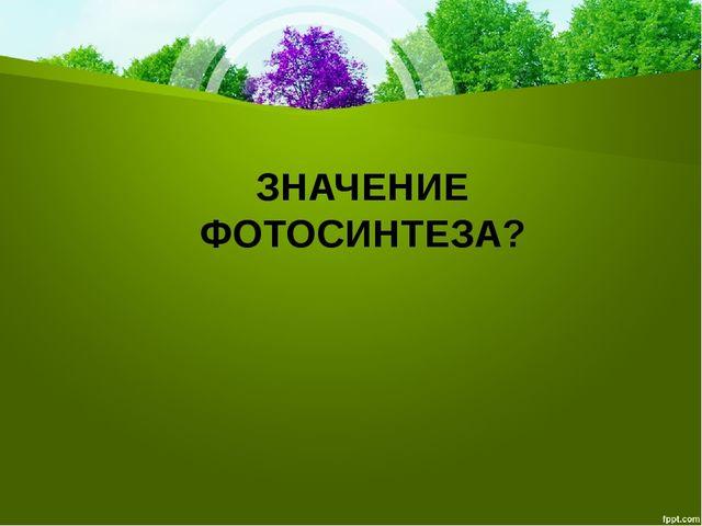 ЗНАЧЕНИЕ ФОТОСИНТЕЗА?