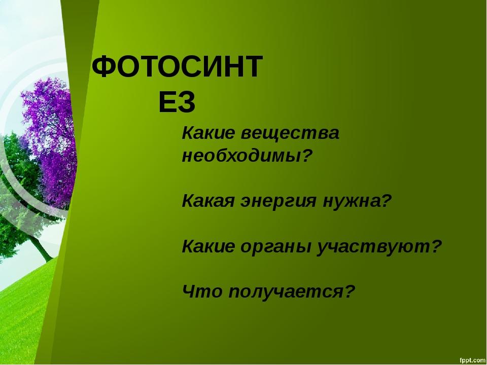 Какие вещества необходимы? Какая энергия нужна? Какие органы участвуют? Что п...