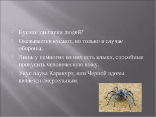 Кусают ли пауки людей? Оказывается кусают, но только в случае обороны. Лишь у