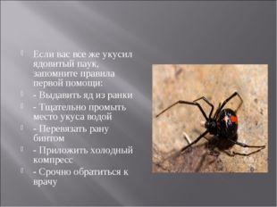 Если вас все же укусил ядовитый паук, запомните правила первой помощи: - Выда