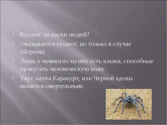 Кусают ли пауки людей? Оказывается кусают, но только в случае обороны. Лишь у...