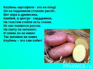 hello_html_1842771b.jpg