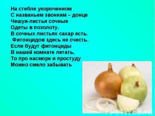 hello_html_5eb587a6.jpg