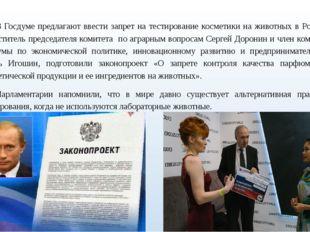 В Госдуме предлагают ввести запрет на тестирование косметики на животных в Р