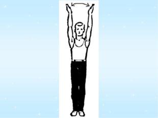 Полосатенький енот Изображает вертолёт: Лапками машет назад и вперед, Словно