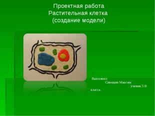 Проектная работа Растительная клетка (создание модели) Выполнил: Синицин Макс