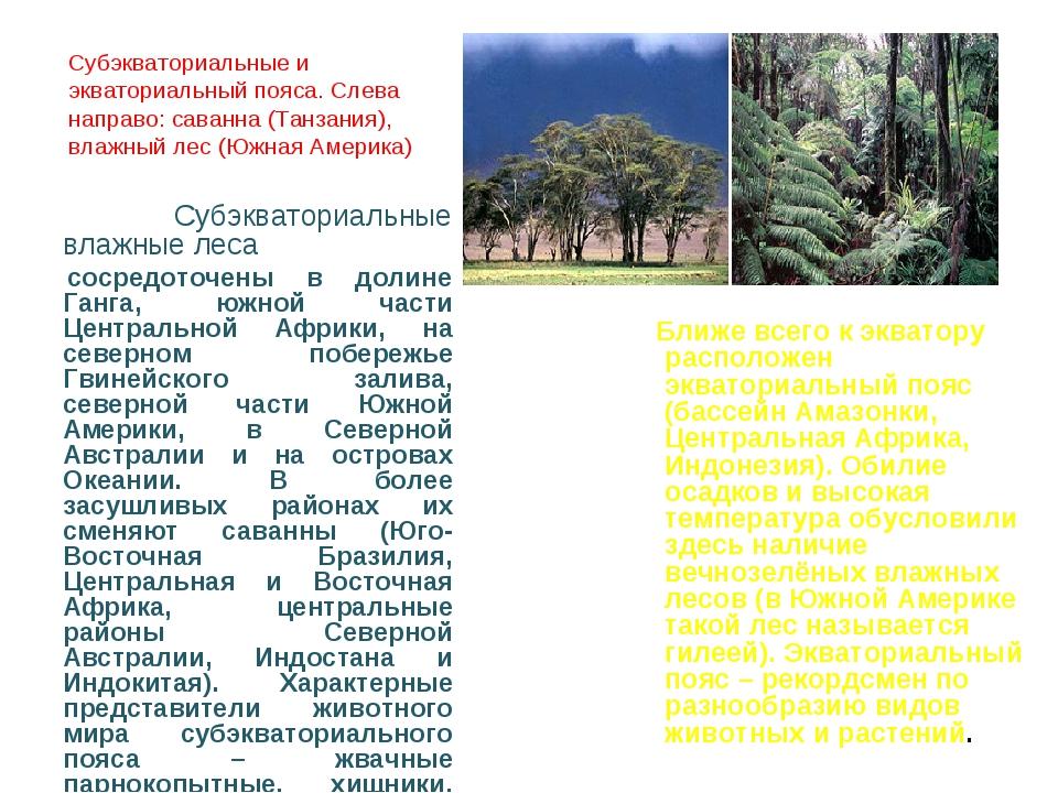 Субэкваториальные и экваториальный пояса. Слева направо: саванна (Танзания),...