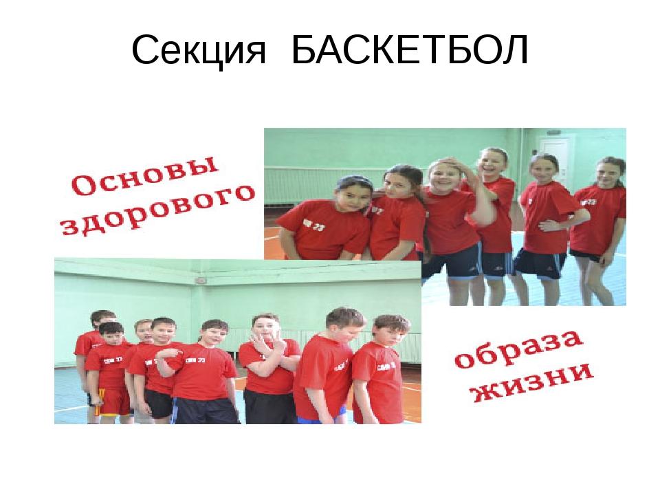 Секция БАСКЕТБОЛ
