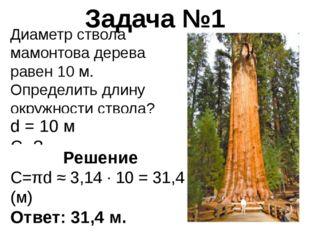 Диаметр ствола мамонтова дерева равен 10 м. Определить длину окружности ствол