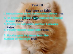 Say true or false Rescue homes are for the homeless animals True 2. In Englan
