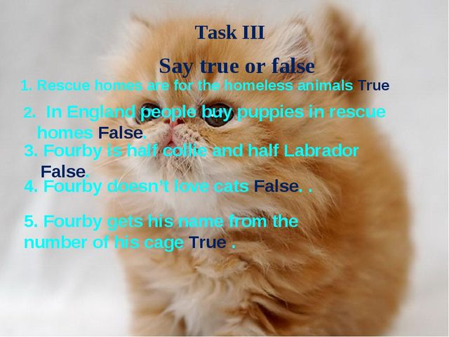 Say true or false Rescue homes are for the homeless animals True 2. In Englan...