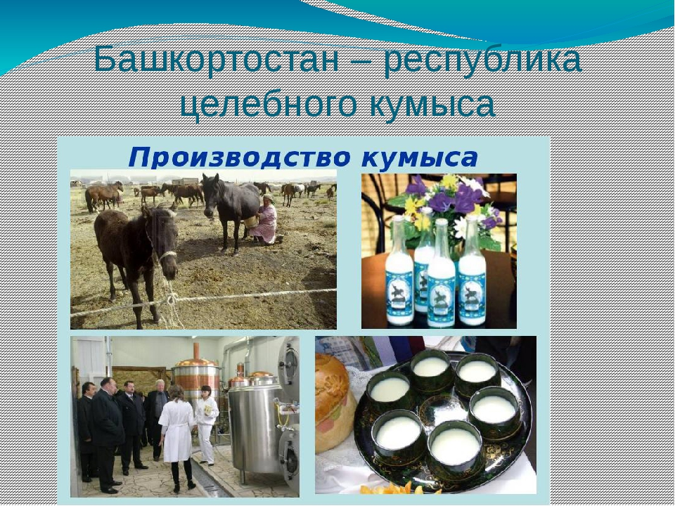 Башкортостан – республика целебного кумыса