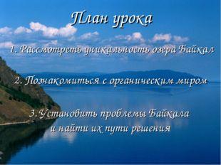 План урока 1. Рассмотреть уникальность озера Байкал 2. Познакомиться с органи