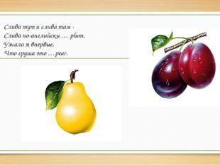 Слива тут и слива там - Слива по-английски … plum. Узнала я впервые, Что груш