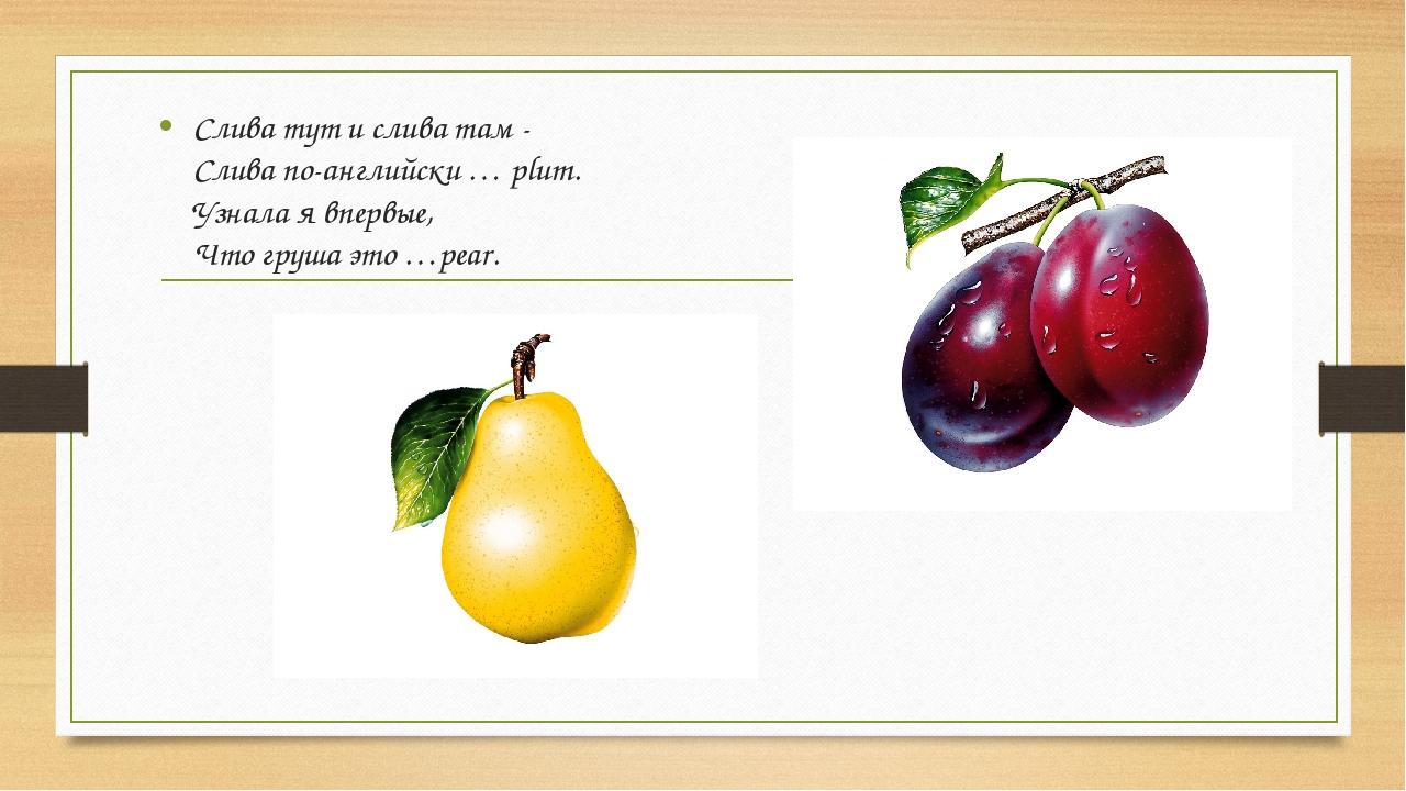 Слива тут и слива там - Слива по-английски … plum. Узнала я впервые, Что груш...