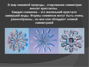В мир неживой природы , очарование симметрии вносят кристаллы. Каждая снежин