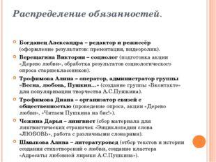 Распределение обязанностей. Богданец Александра – редактор и режиссёр (оформл