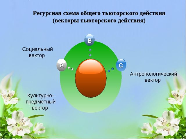 Ресурсная схема общего тьюторского действия (векторы тьюторского действия) Со...