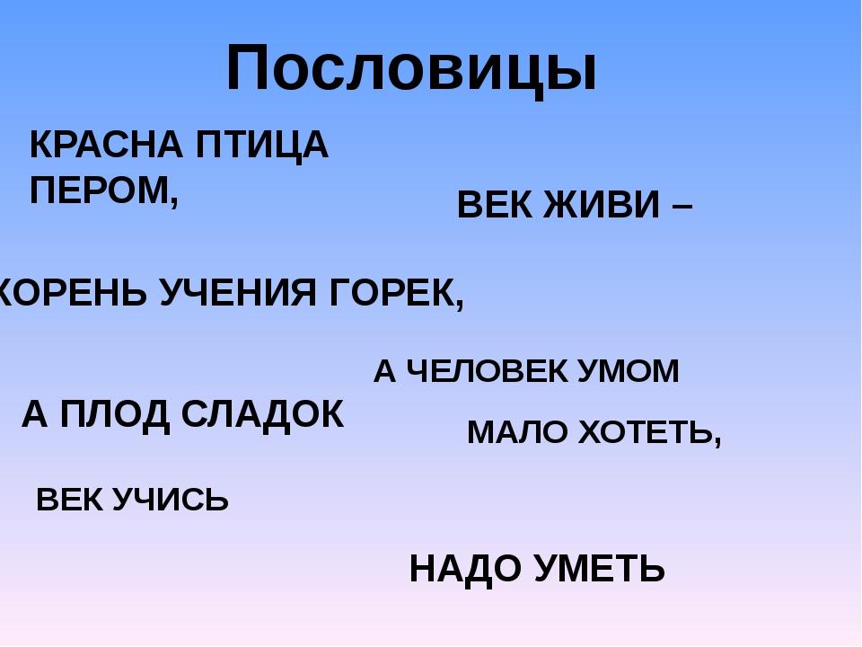 Пословицы КРАСНА ПТИЦА ПЕРОМ, А ЧЕЛОВЕК УМОМ КОРЕНЬ УЧЕНИЯ ГОРЕК, А ПЛОД СЛАД...