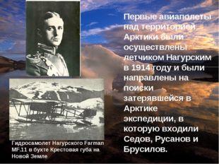 Первые авиаполеты над территорией Арктики были осуществлены летчиком Нагурски