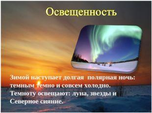 Зимой наступает долгая полярная ночь: темным темно и совсем холодно. Темноту