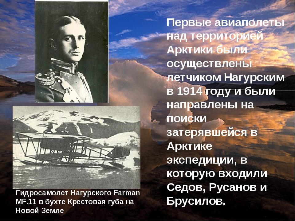 Первые авиаполеты над территорией Арктики были осуществлены летчиком Нагурски...