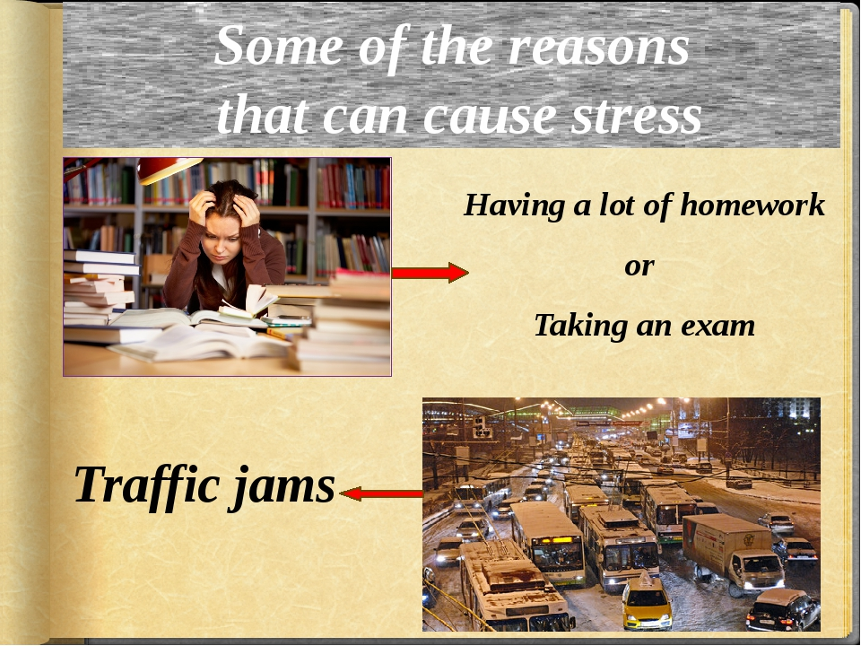 Some of the reasons that can cause stress Having a lot of homework or Taking...