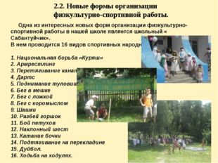 2.2. Новые формы организации физкультурно-спортивной работы. Одна из интересн