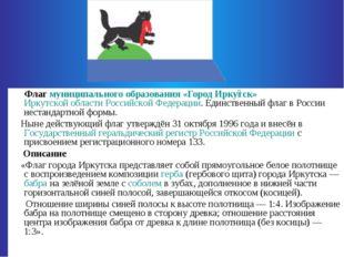 Флаг муниципального образования «Город Ирку́тск» Иркутской области Российско